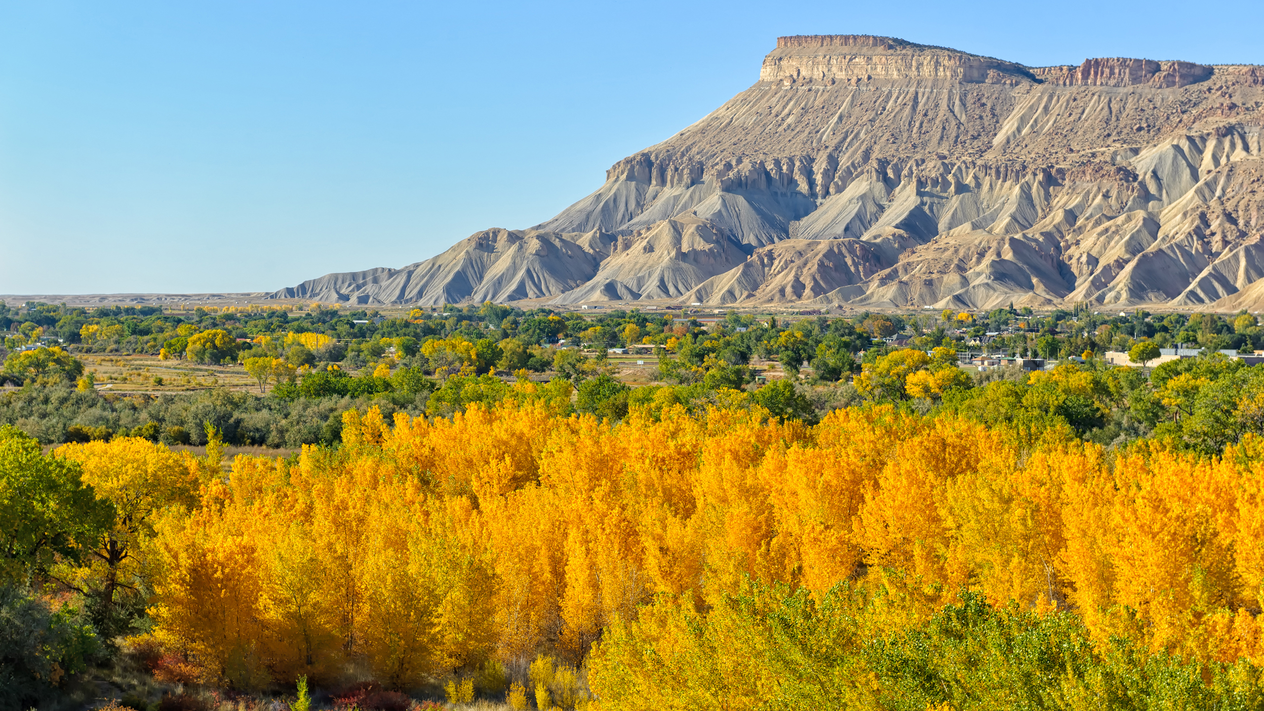 Grand Junction Real Estate Lifestyle Photo 06