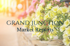 May 2018 Real Estate Market Report - Grand Junction
