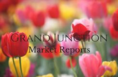 April 2018 Real Estate Market Report - Grand Junction