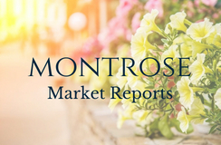 May 2018 Real Estate Market Report - Montrose