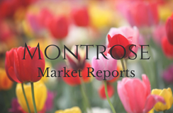 April 2018 Real Estate Market Report - Montrose