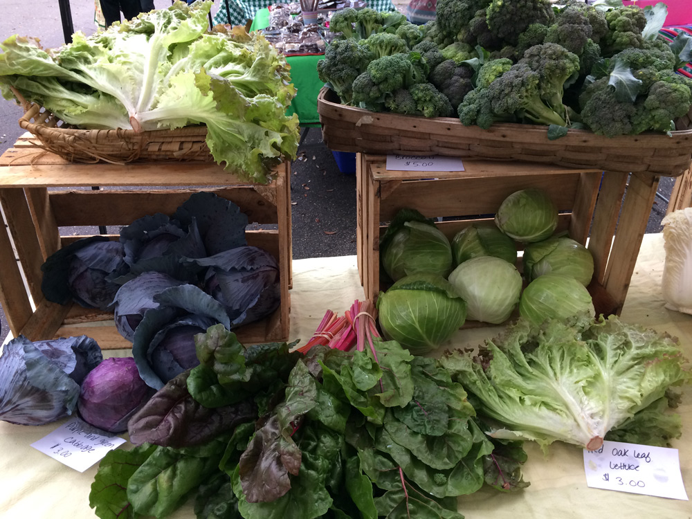Living in Gainesville: The Bountiful Farmers' Markets