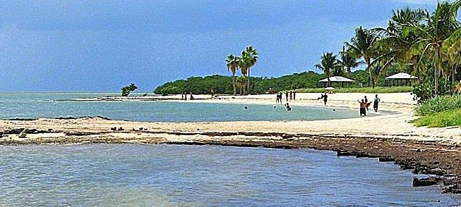 Middle Keys Florida Real Estate | Coldwell Banker - Schmitt