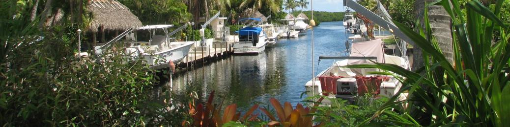 Key Largo Real Estate | Coldwell Banker - Schmitt Real Estate